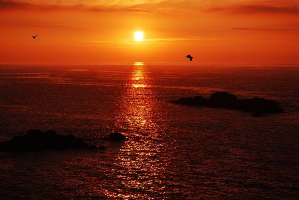 sunset birds sky red sea islands calm beauty emotions clouds wallpaper