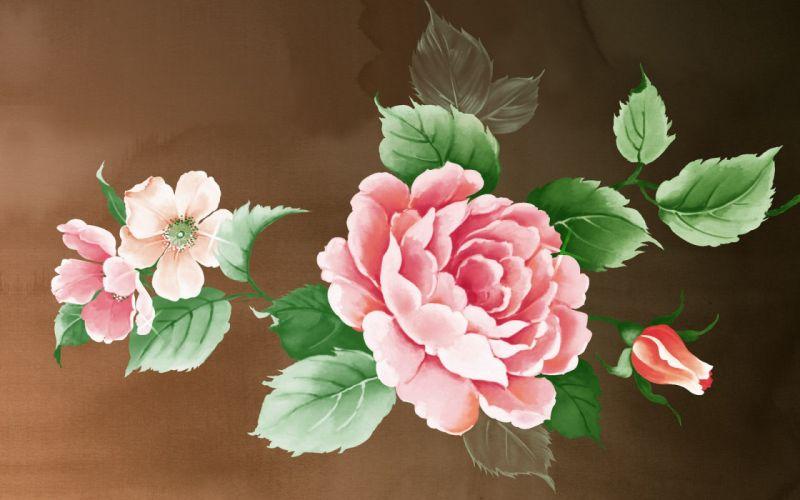 flower flowers petals garden nature plants beautiful delicate colorful soft spring 1920x1200 (191) wallpaper