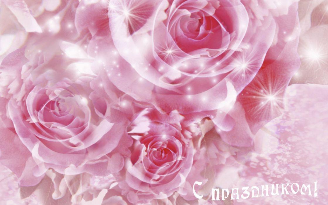 flower flowers petals garden nature plants beautiful delicate colorful soft spring 1920x1200 (220) wallpaper