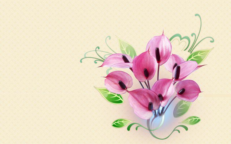 flower flowers petals garden nature plants beautiful delicate colorful soft spring 1920x1200 (244) wallpaper