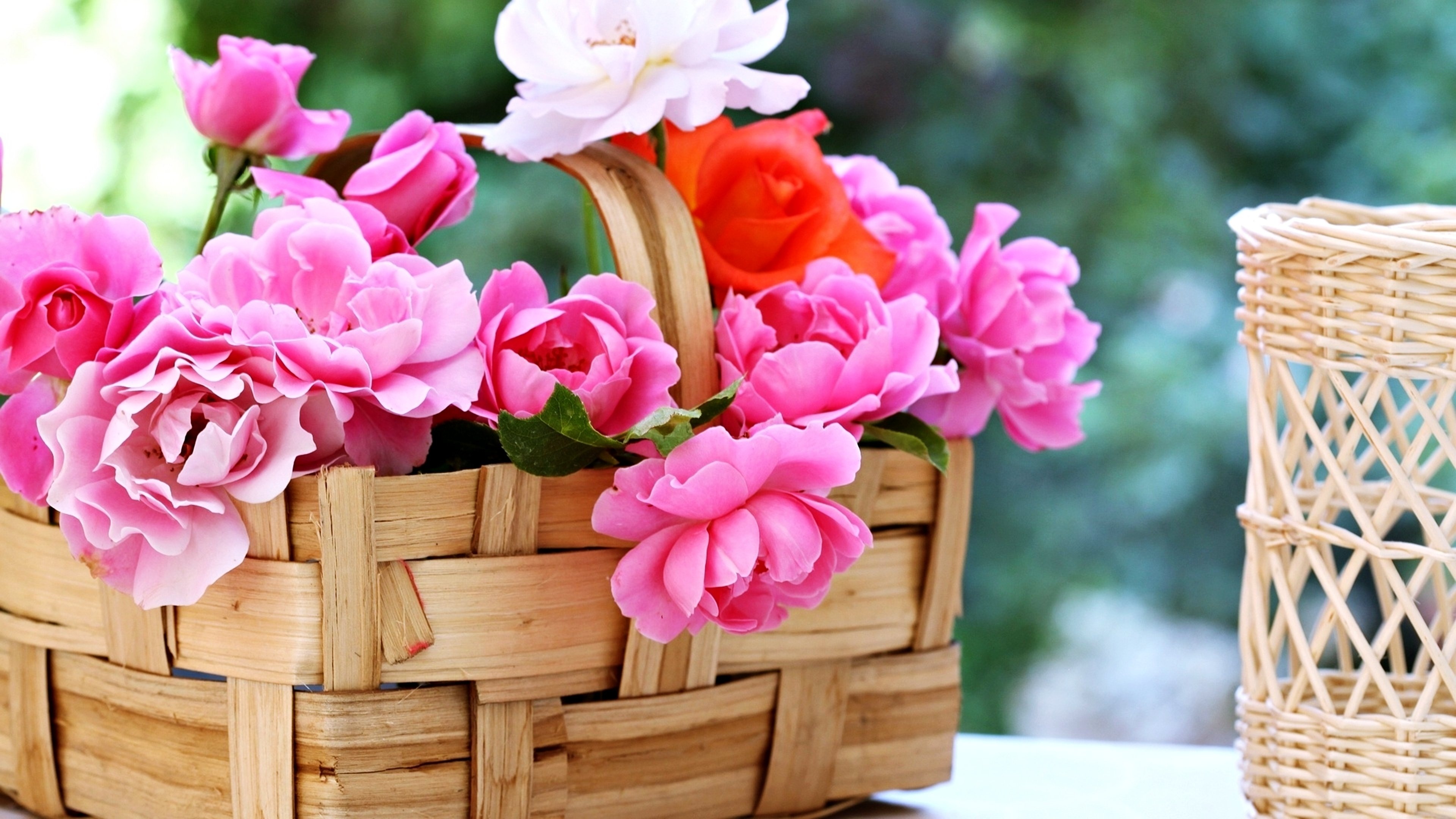Love Garden Roses: Basket Roses Flowers Gardens Spring Nature Beauty Love