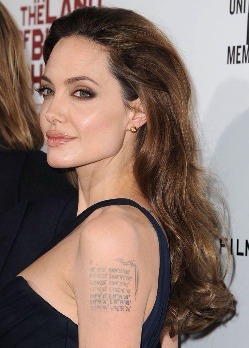 angelina jolie actriz tatuaje wallpaper