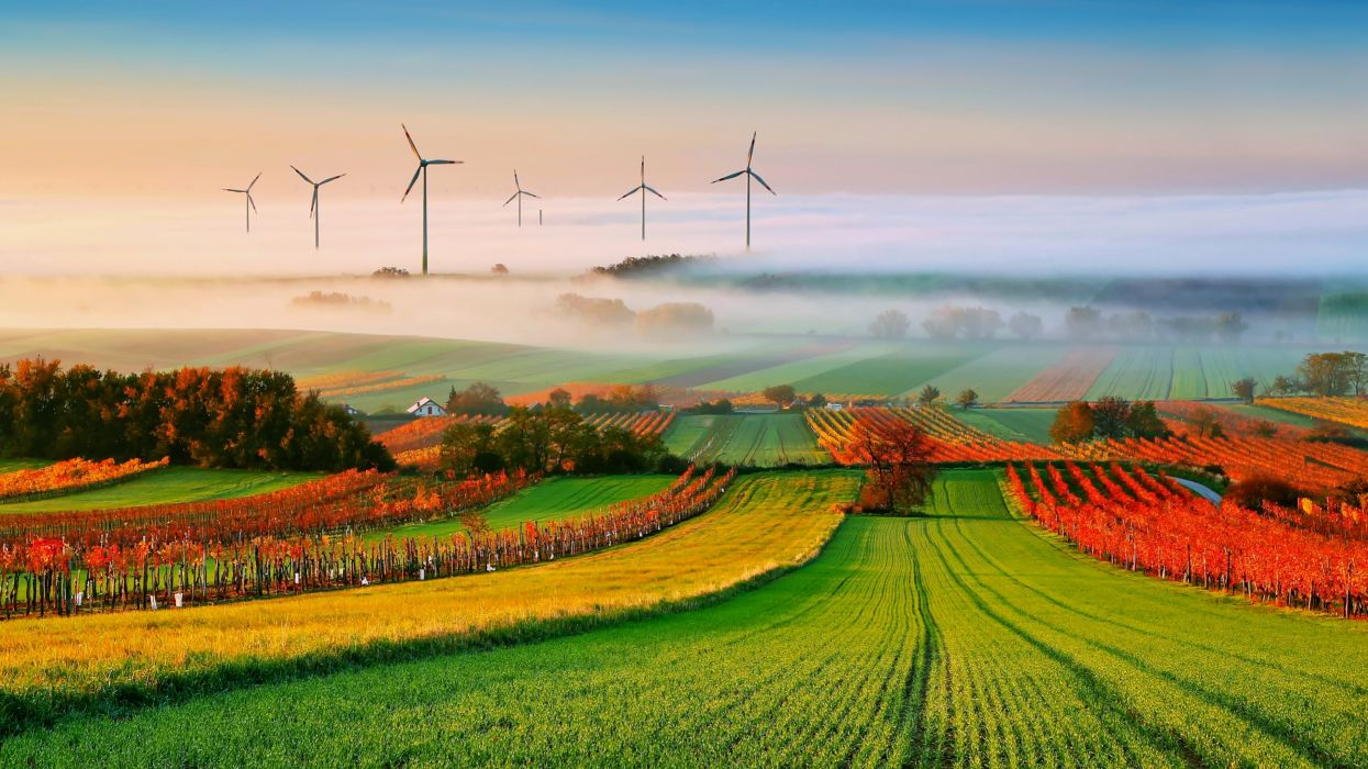 fog landscapes nature fields trees countryside fans Electric power generation autumn clouds wallpaper