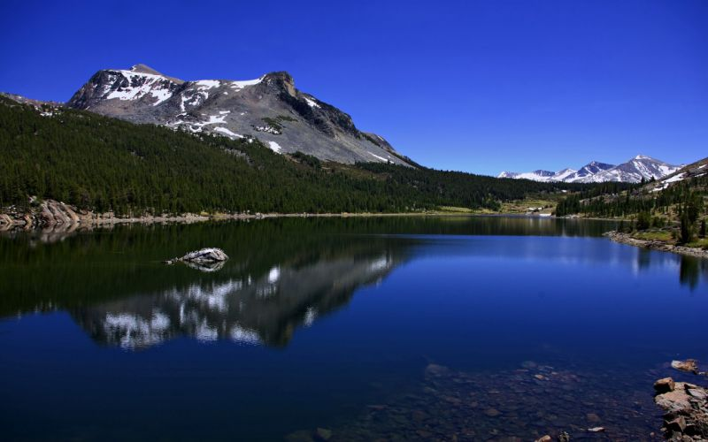 lakes mountains nature forest jungle snow water landscapes wallpaper