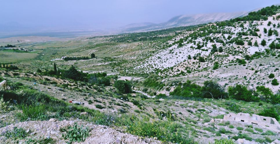 africa algeria amazigh chaoui hills landscapes mountains nature North countryside tebessa Trees flowers plans wallpaper