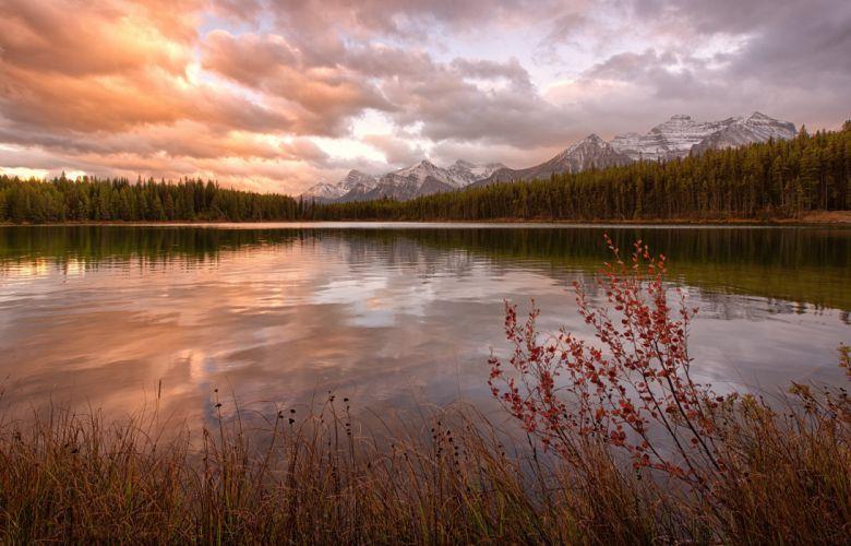 forest canada tarn mountain lake reflection sunset sunrise wallpaper