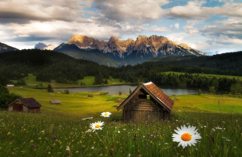 mountains flowers forest nature hut lake wallpaper