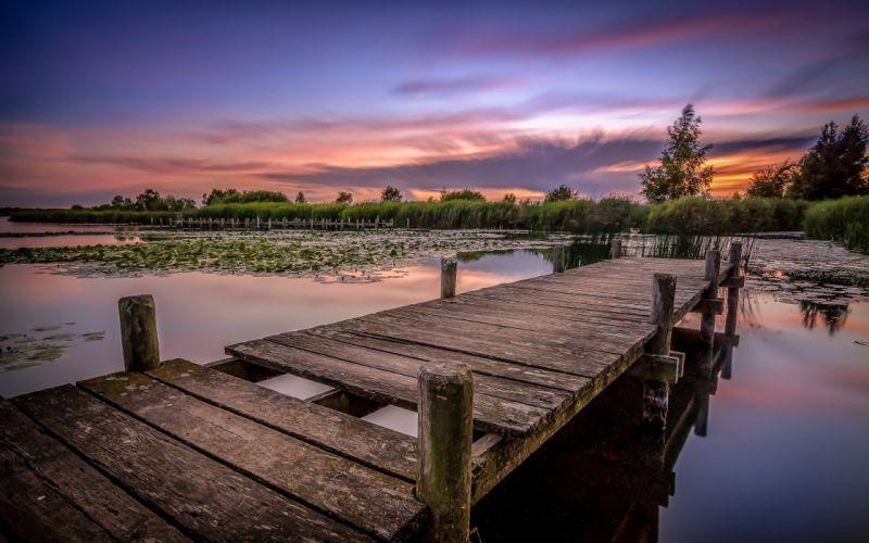 pond lake morning bridge forest pier dock wallpaper