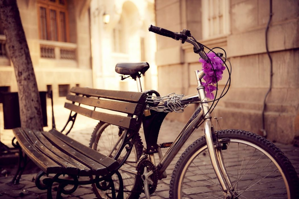 bike bench street chain flowers city wallpaper