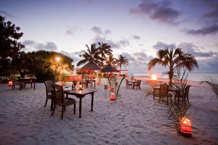 coast ocean palm trees evening tropical beach ocean bench wallpaper