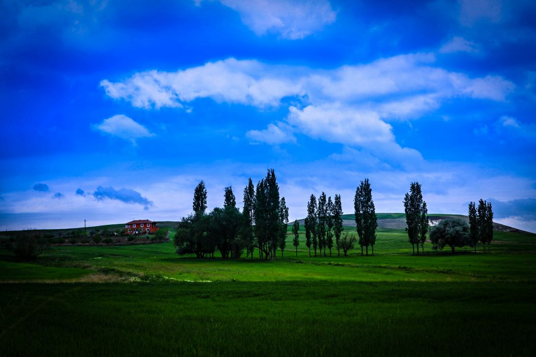 grass green landscapes nature countryside trees sky clouds earth house hills fields quiet wallpaper