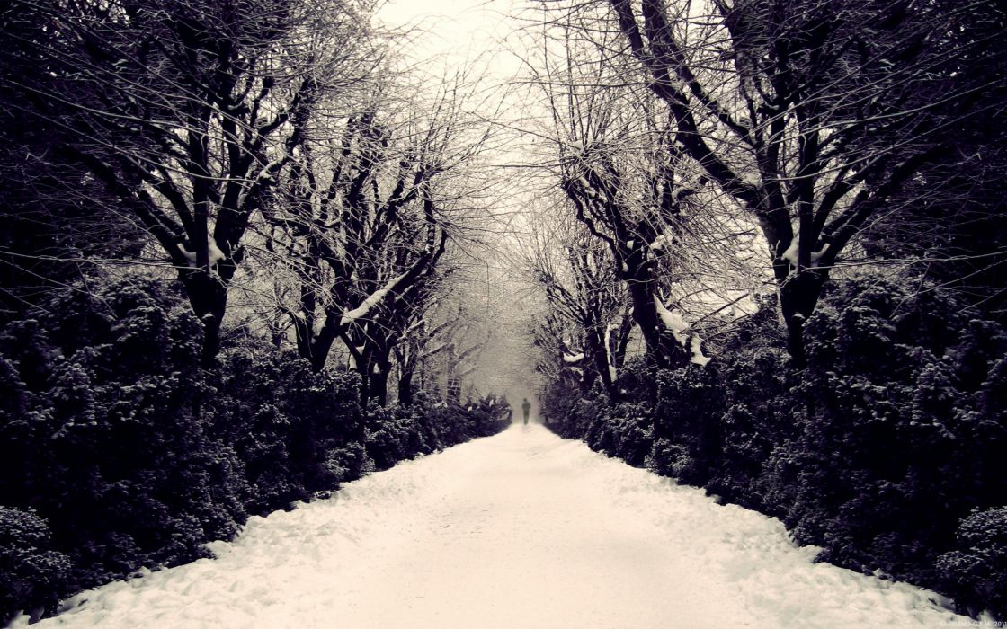 lonely mood sad alone sadness emotion people loneliness Solitude sorrow winter path road wallpaper