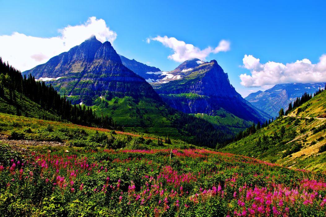 Spring Mountain Landscape Flowers Purple Colored Hills: Spring Mountains Landscapes Sky Clouds Flowers Grass Green