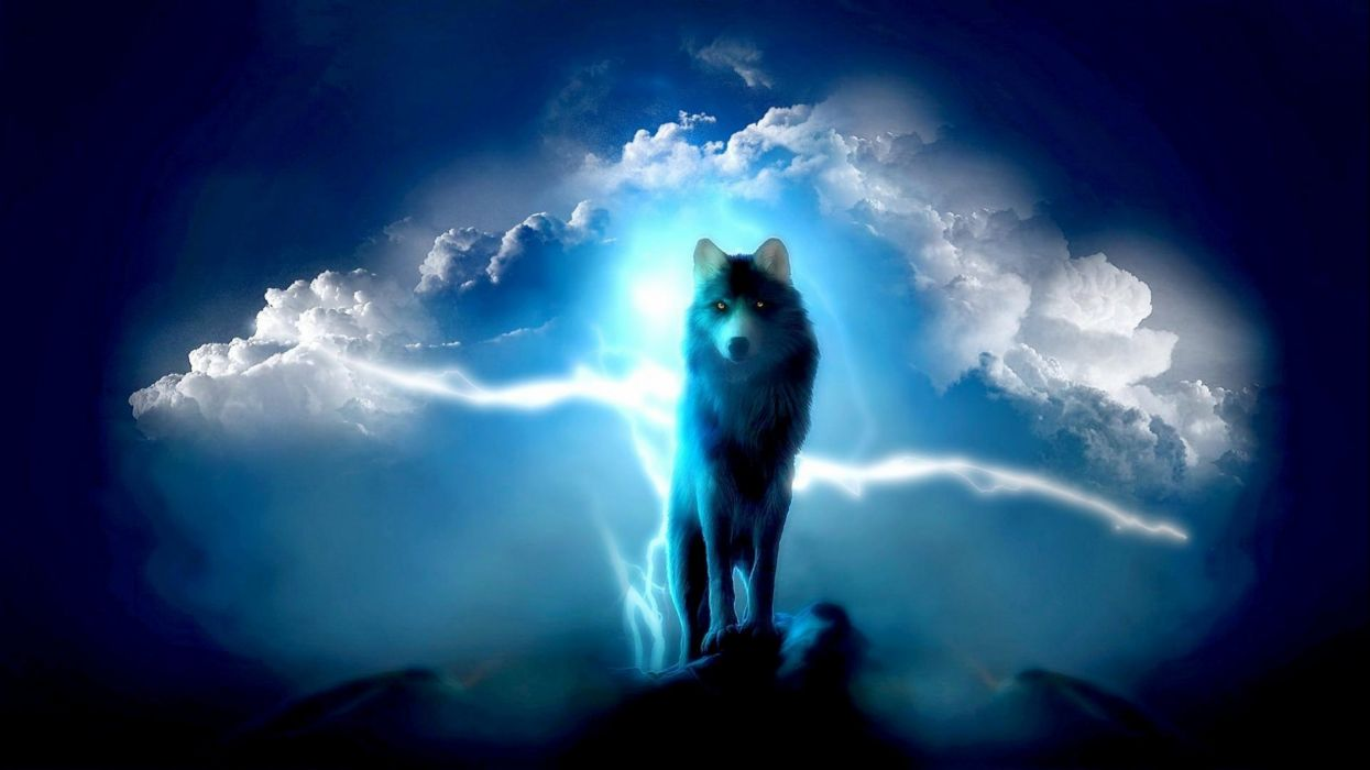 wolf wolves predator carnivore artwork fantasy sky storm lightning f wallpaper