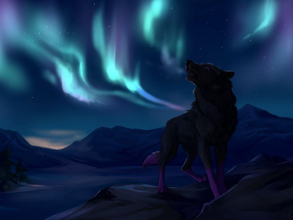 wolf wolves predator carnivore artwork sky d wallpaper