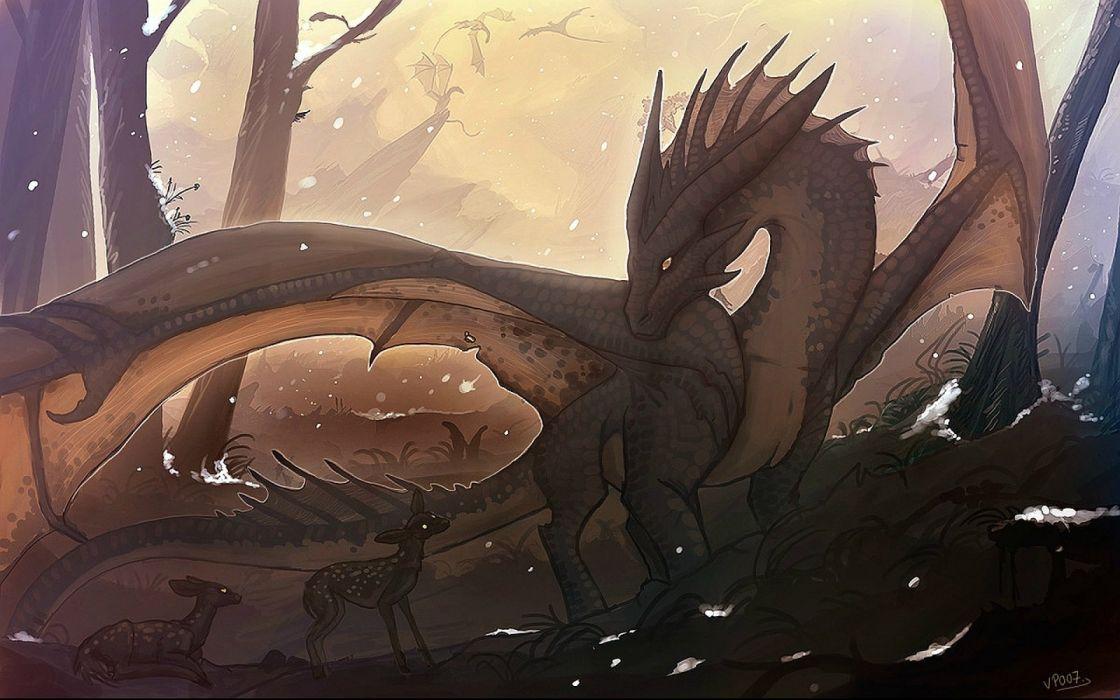 dragon fantasy artwork art dragons wallpaper