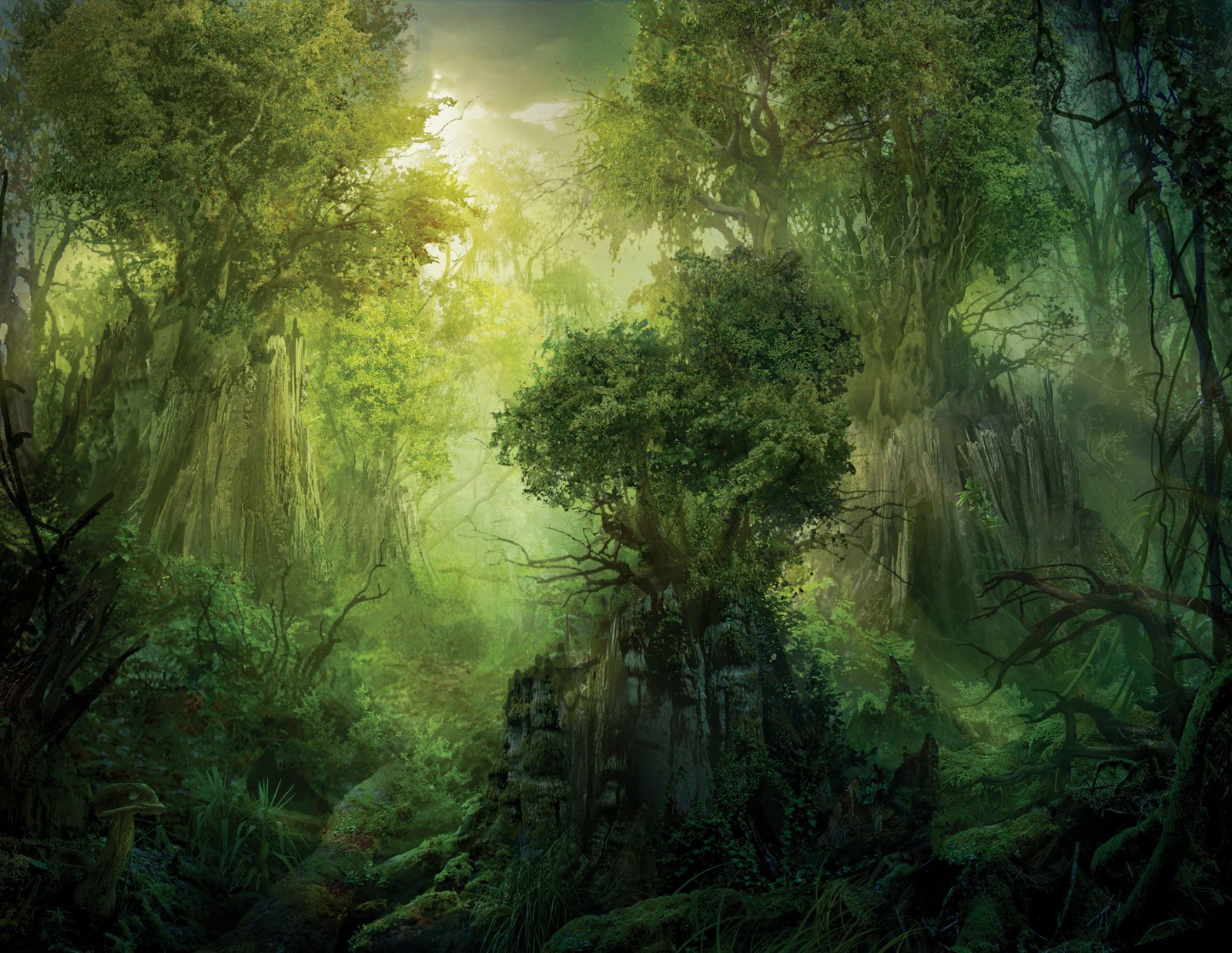 Forest nature tree landscape wallpaper | 3840x1080 | 799916 ...