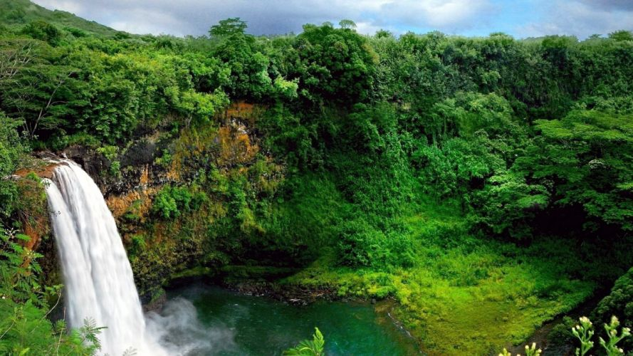 landscape nature tree forest woods waterfall river wallpaper