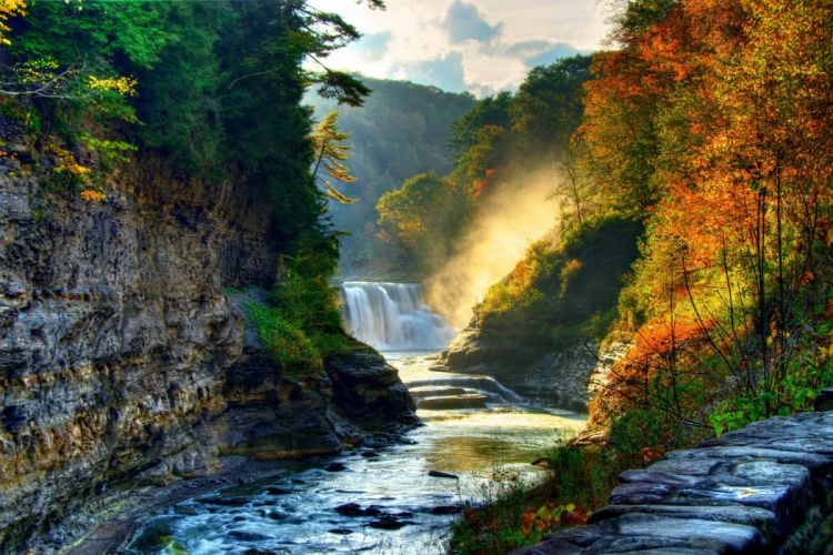 landscape nature tree forest woods autumn river waterfall wallpaper