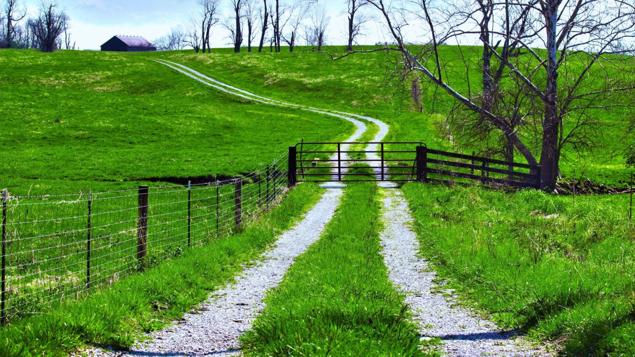 way path road green fields trees landscapes nature earth countryside house wallpaper