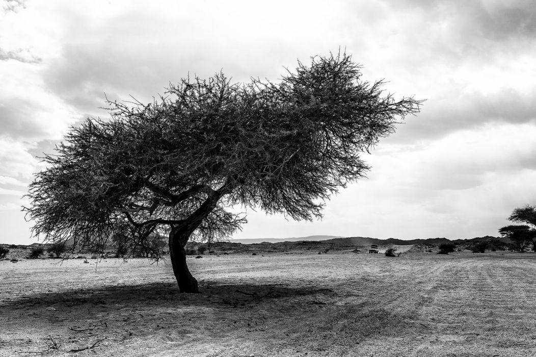 desert africa sand storms cars hills stones sky clouds hoggar algeria old wallpaper