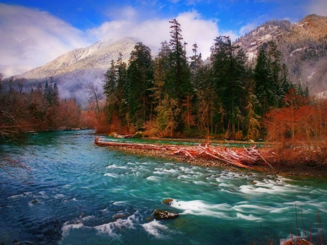 landscape nature tree forest woods autumn river wallpaper