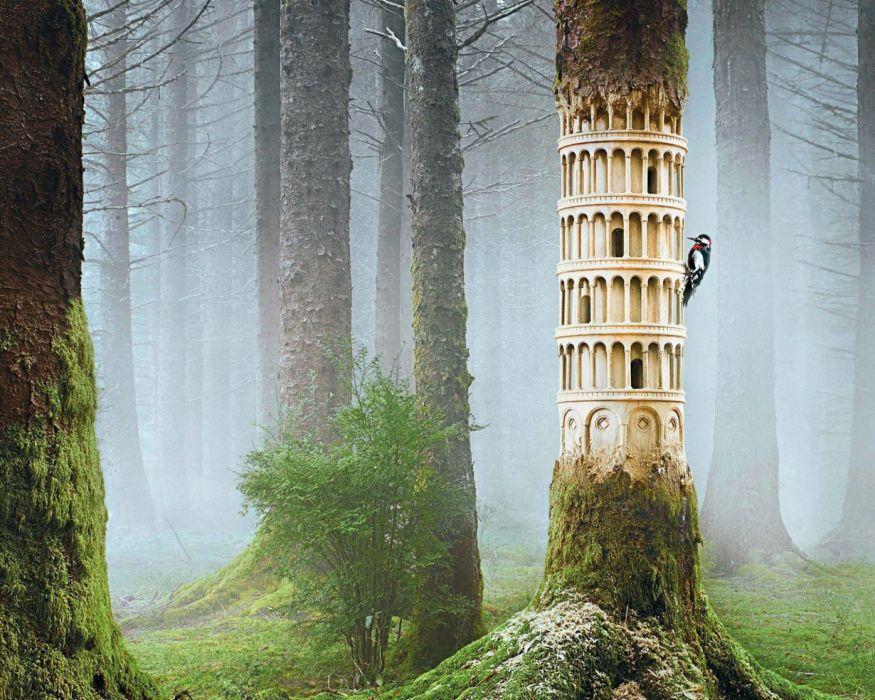 artwork fantasy magical art forest tree landscape nature tower statue woodpecker wallpaper