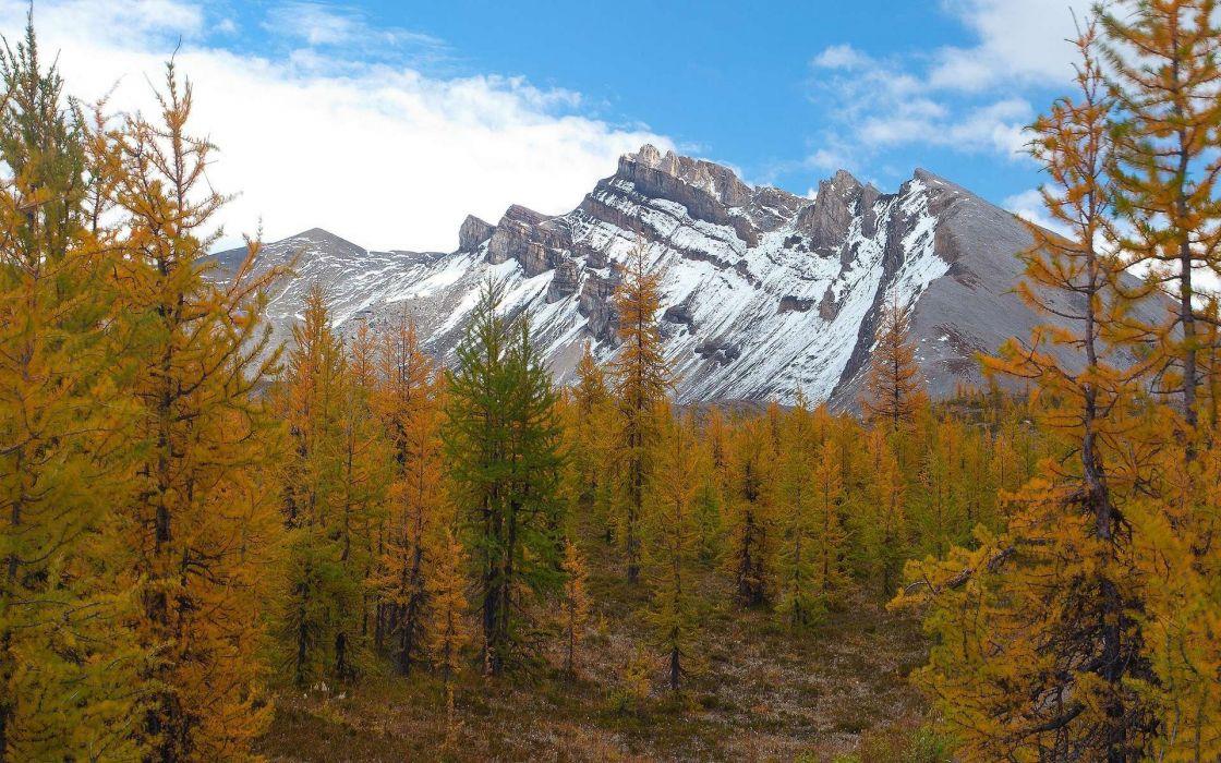 mountains landscape nature mountain autumn forest wallpaper