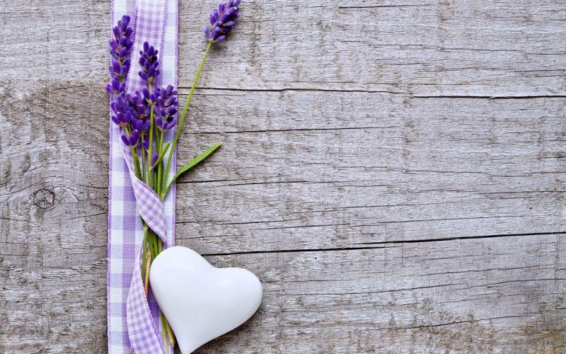 flowers hearts love emotions woods Lavender Purple wallpaper