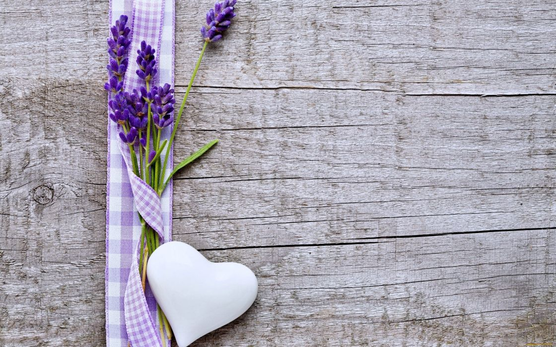 flowers hearts love emotions woods Lavender Purple wallpaper