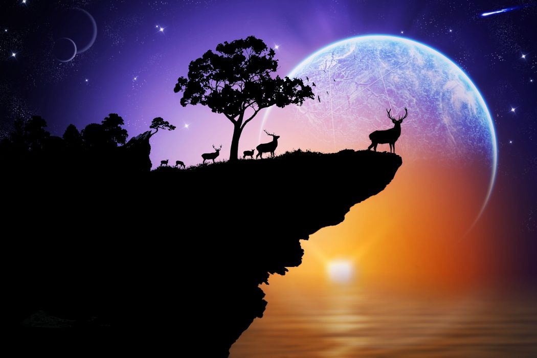 space fantasy animals landscapes planets sunset beauty imaginations stars wallpaper