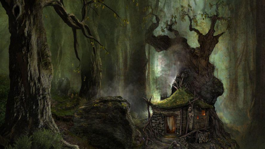 game ArcaniA Gothic 4 fantasy wallpaper