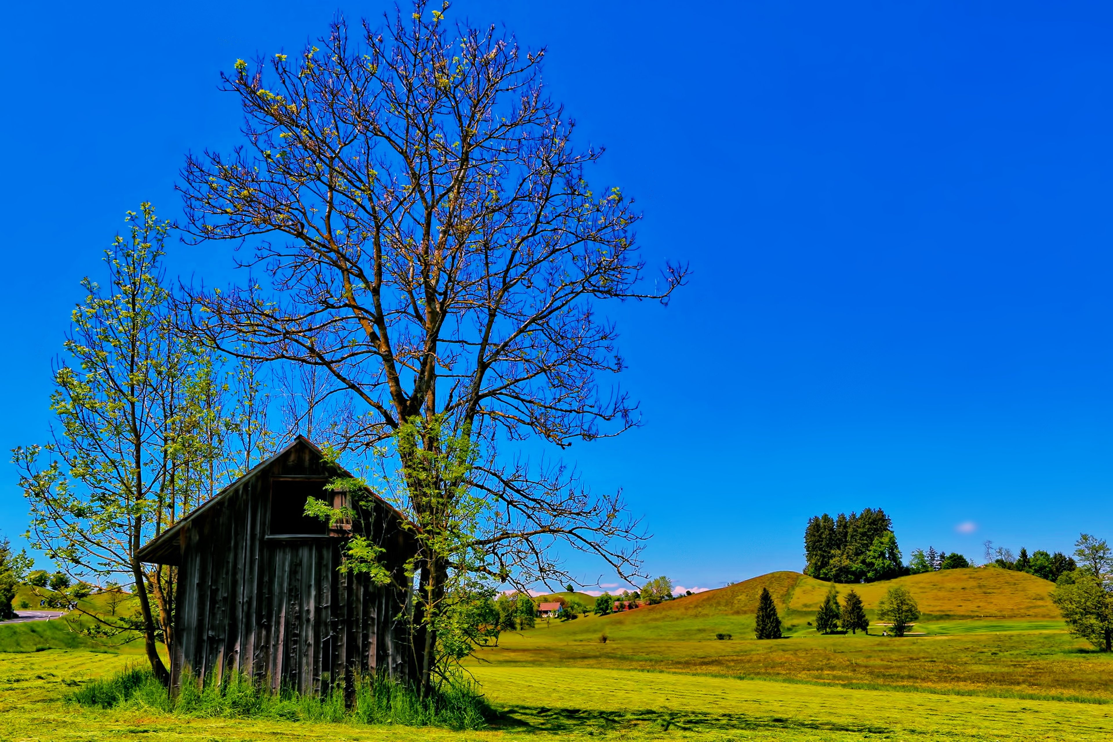 Countryside Trees Spring Sunny Sky Blue House Huts Fields Hills Green Grass Landscapes Nature Earth Wallpaper
