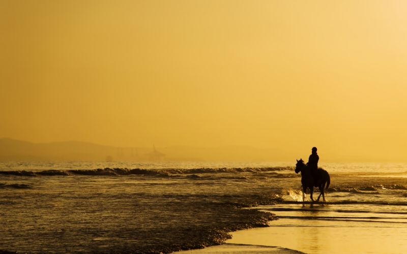 sea beaches horse sky yellow landscapes nature earth alone lonely emotions horseman rider thinking wallpaper