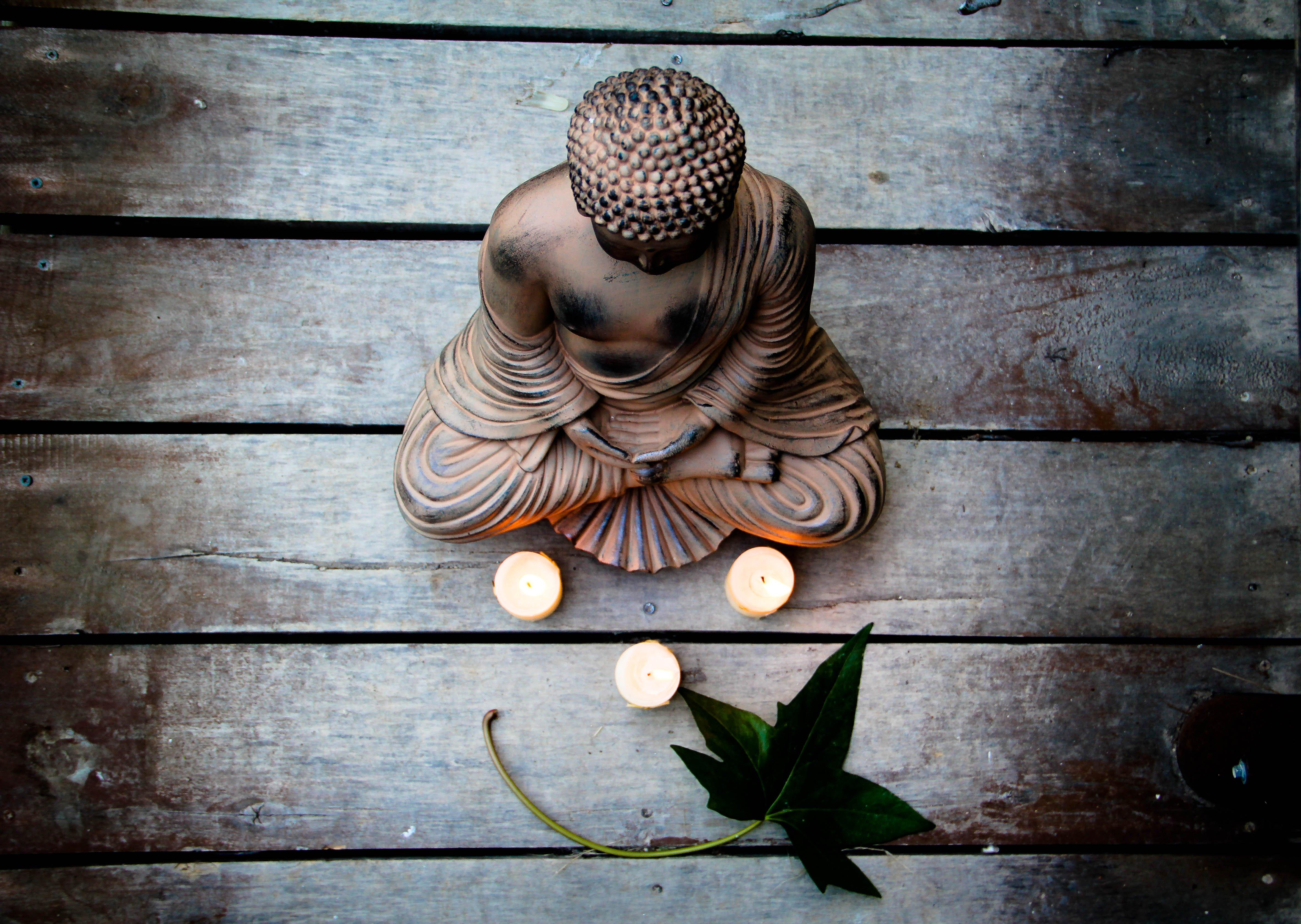 Zen mood bokeh garden buddhism religion wallpaper - Decoracion zen fotos ...