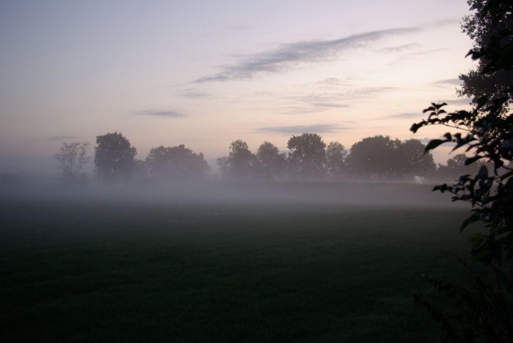 Nebel am Abend wallpaper