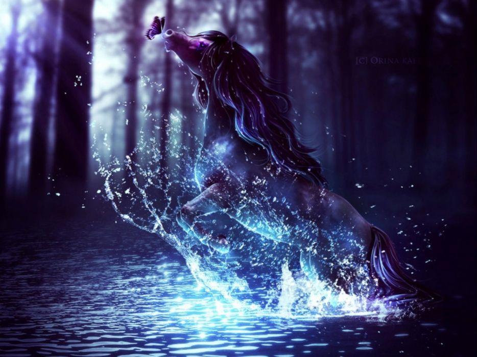 fantasy horse art artistic wallpaper
