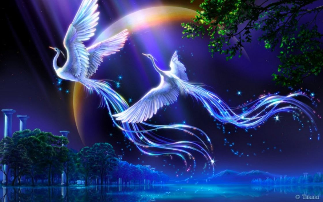 fantasy bird art artistic creature wallpaper