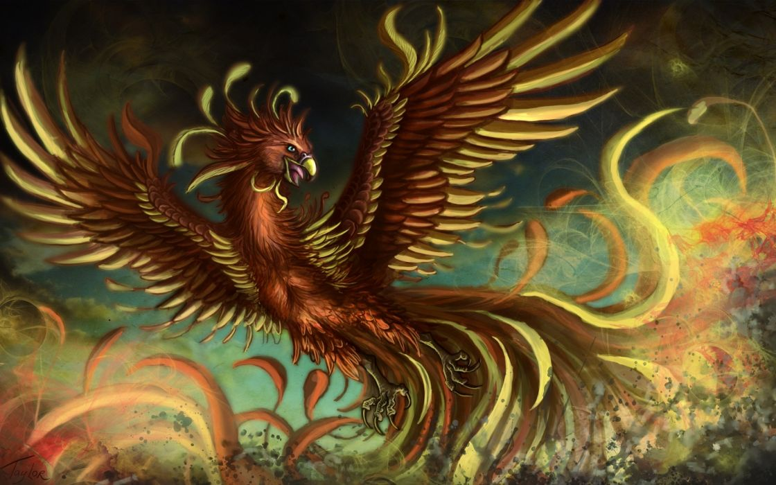 fantasy pheonix bird art artwork wallpaper