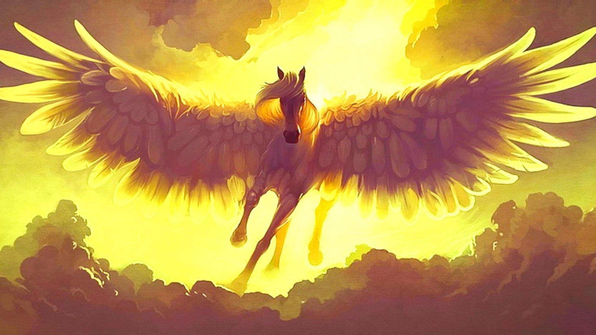 Fantasy Pegasus Horse Animal Art Artistic Artwork Wallpaper 1920x1080 667672 Wallpaperup