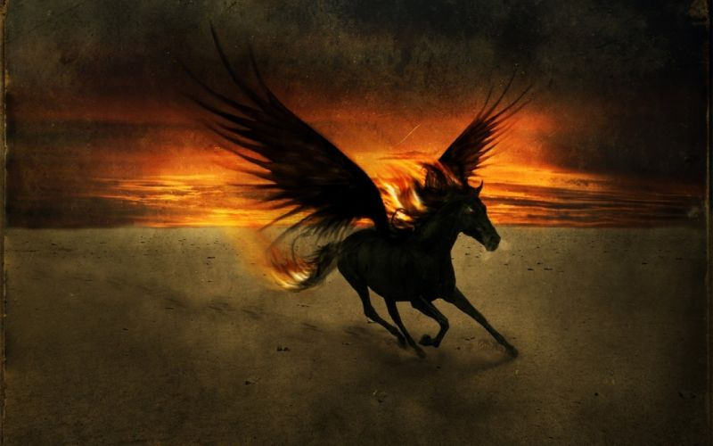 fantasy pegasus horse animal art artistic artwork wallpaper