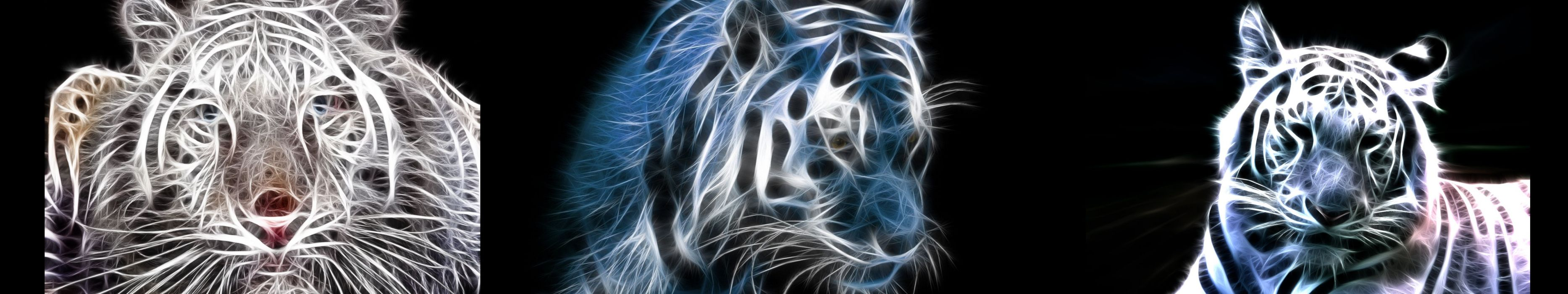 wallpaper triple multi multiple screen monitor animal light tiger wallpaper