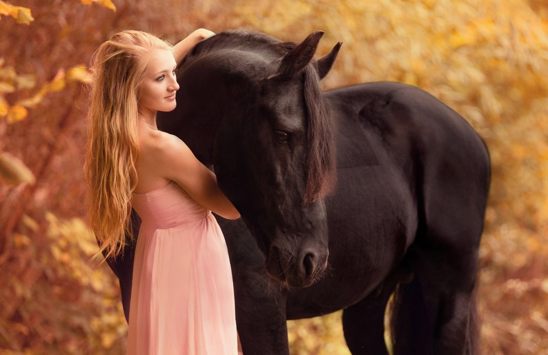 animal horse beautiful girl dress wallpaper