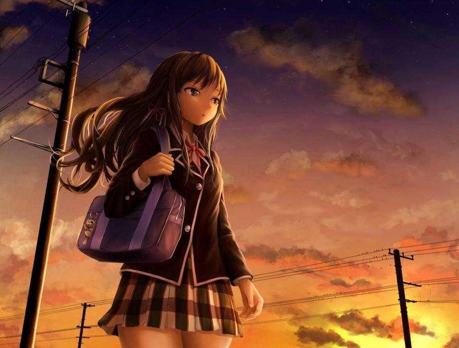 animal bird blue eyes brown hair clouds long hair papi realistic seifuku skirt sky stars sunset yukinoshita yukino wallpaper