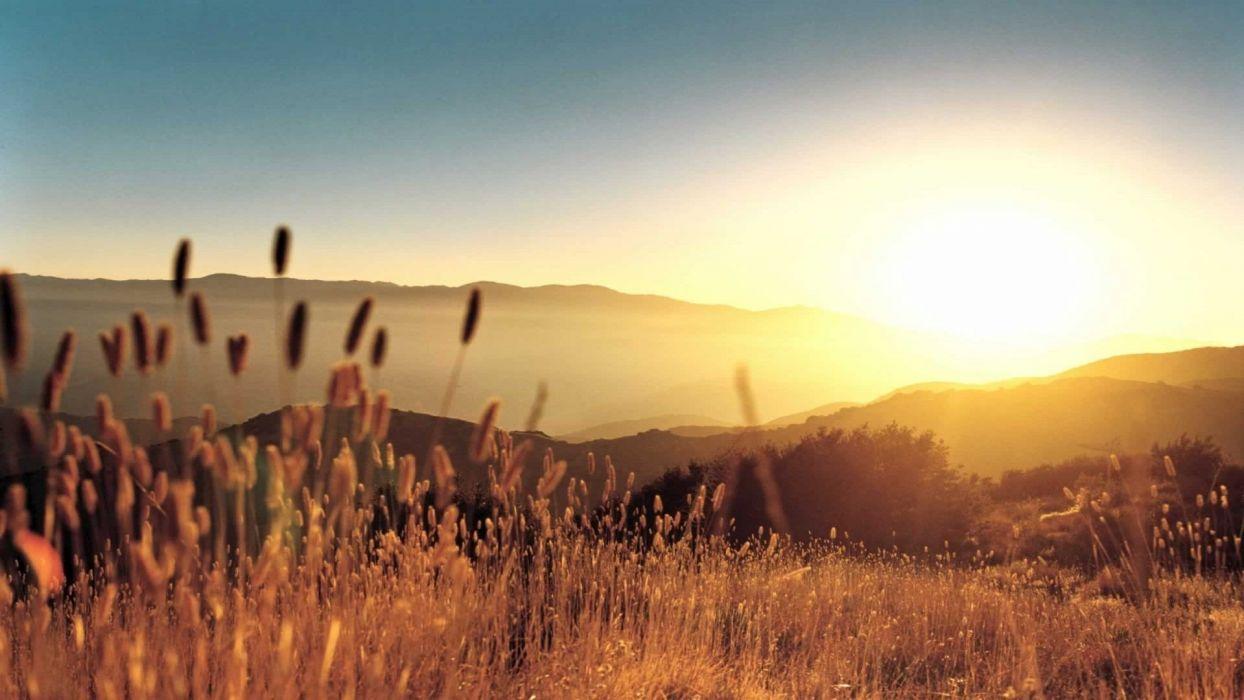 Nature Grass Sunset Hill Fall wallpaper