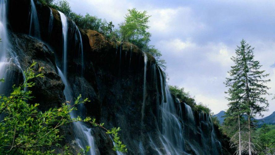 Nature Tree Rock Waterfall wallpaper