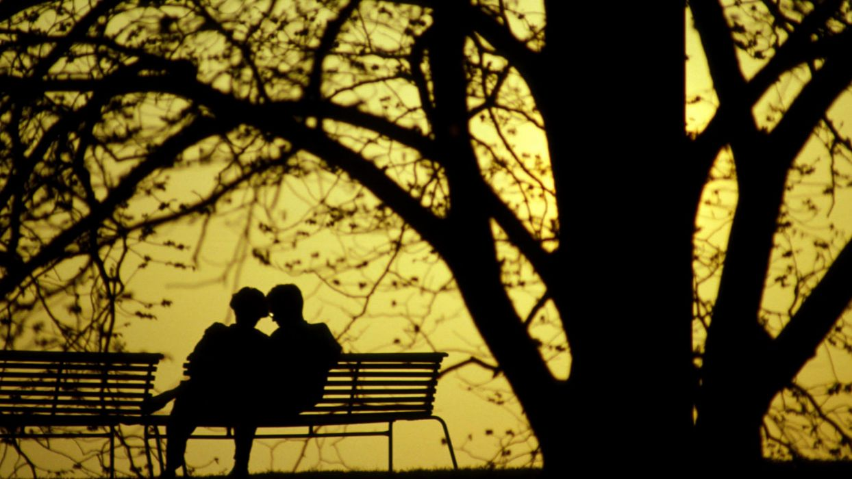 Photography Couple Love Tree Silhouette Romance Bench Park wallpaper