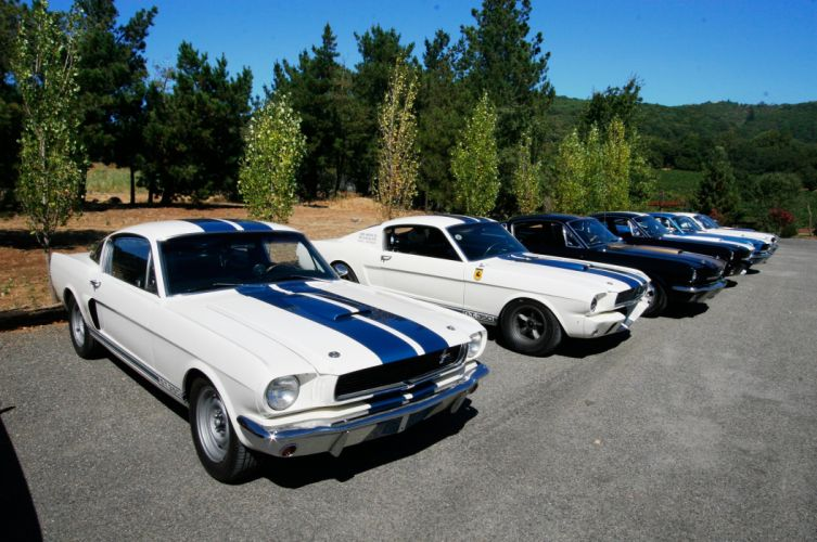 1965 Ford Mustang Shelby GT 350 Prototype Classic Old Muscle USA 12 wallpaper