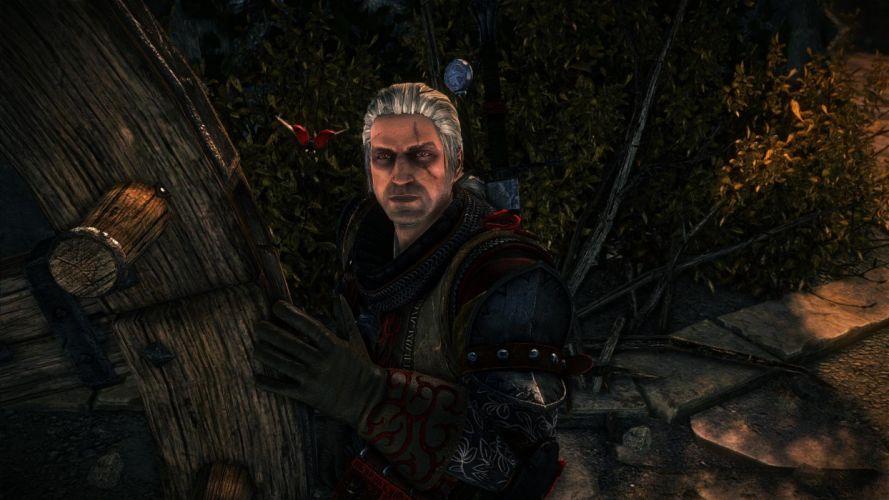 The Witcher 2 Assassins of Kings Geralt scar ladybug wallpaper