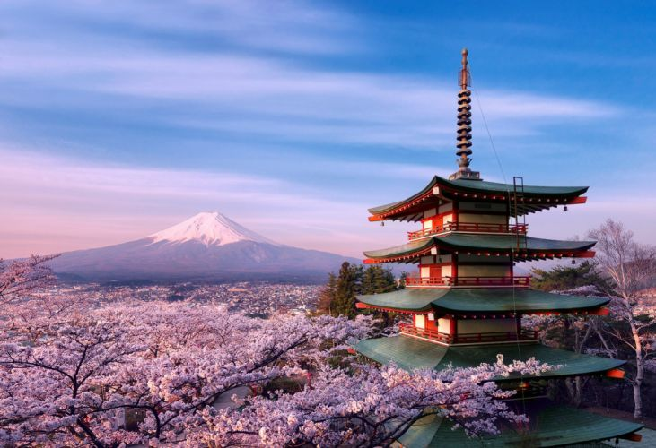 Gora Japan strato volcano blossom blossoms flower scenic castle wallpaper